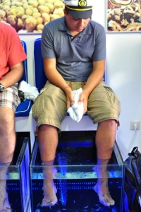 """After seeing these """"Fish Doctor"""" places all over Greece, we decided to try our own fish pedicure in Heraklion. Yes, it's kind of gross when you think about it, but the little fish eat the dead skin off of your feet."""